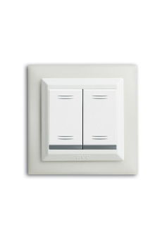 PLAQUE DUPLEX 45 CARREE BLANC TROU CARRE 2 MODULES